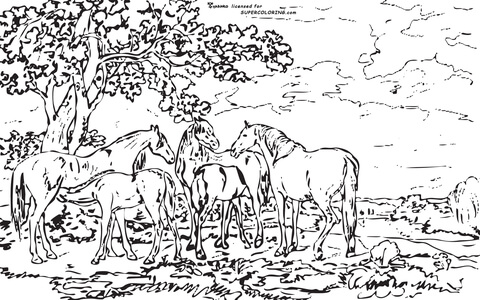 Mares And Foals In A River Landscape By George Stubbs  coloring page