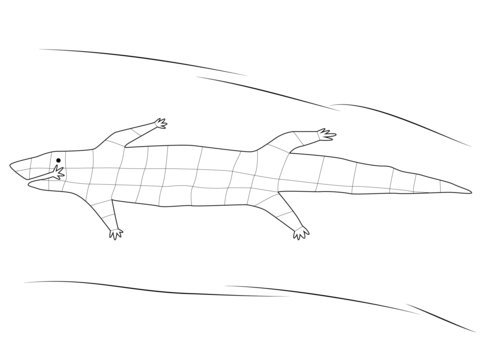 Aboriginal Crocodile coloring page