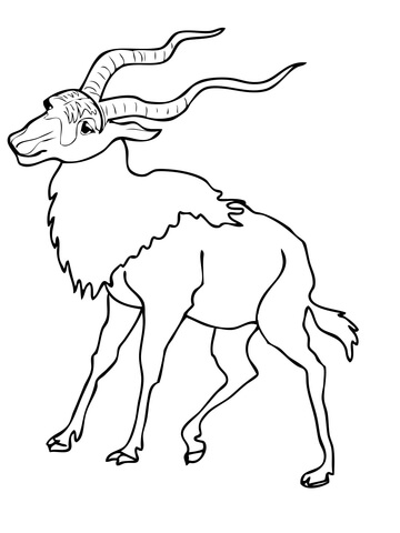 Addax coloring page