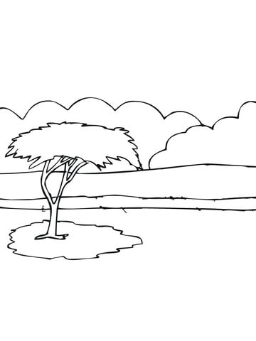 African Acacia Tree coloring page