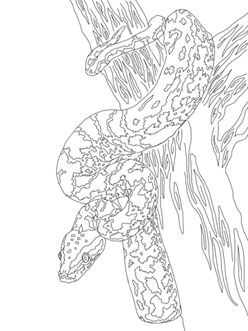 African Rock Python coloring page