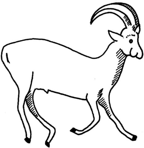Sable Antelope coloring page