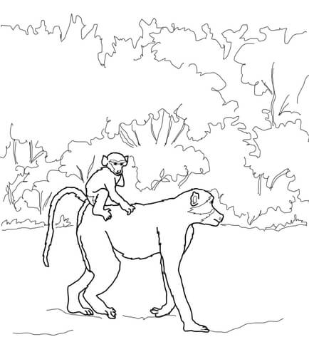 Baboon Baby Rides on Mothers Back coloring page