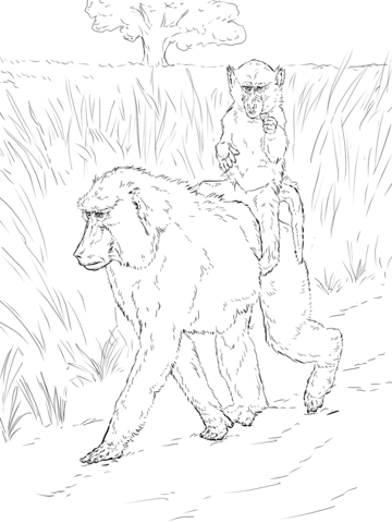Baboon Mother Carries Baby on Back coloring page