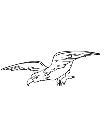 Bald Eagle Diving for Prey coloring page