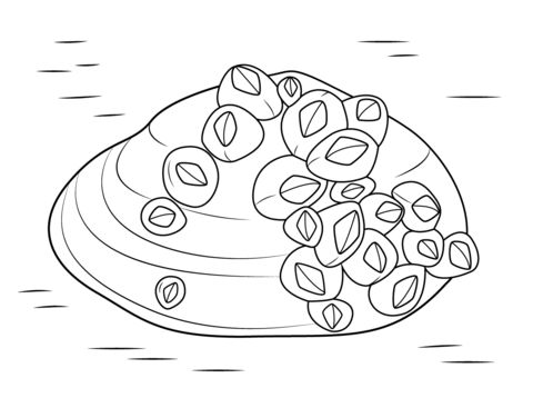 Barnacles on Soft Shell Clam coloring page