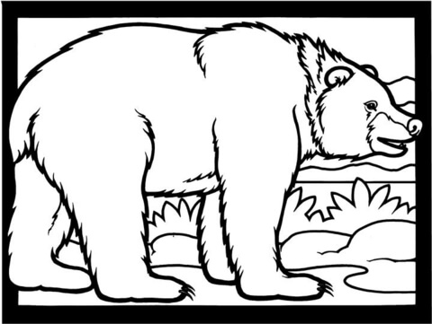 Brown Bear Is Walking coloring page