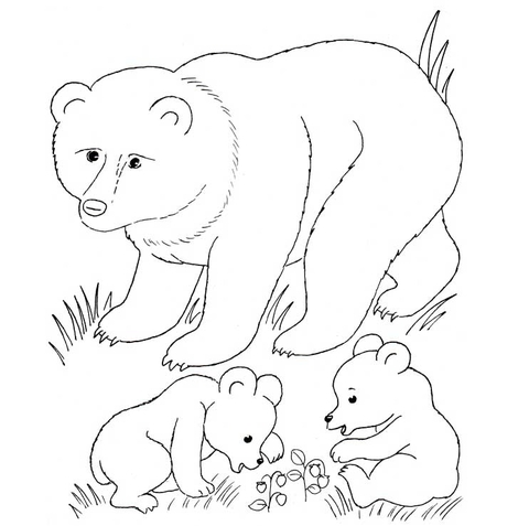 Bear Mother And Bear Cubs coloring page