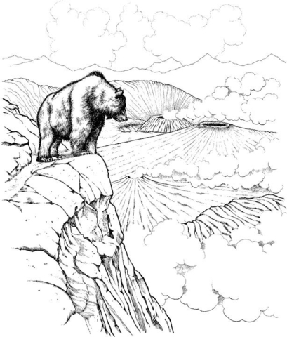 Brown bear overlooking volcanoes in Katmai National Park coloring page