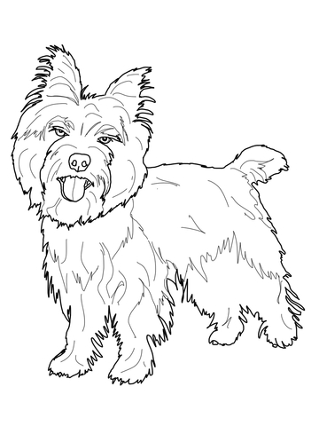 weimaraner coloring page cairn terrier coloring page