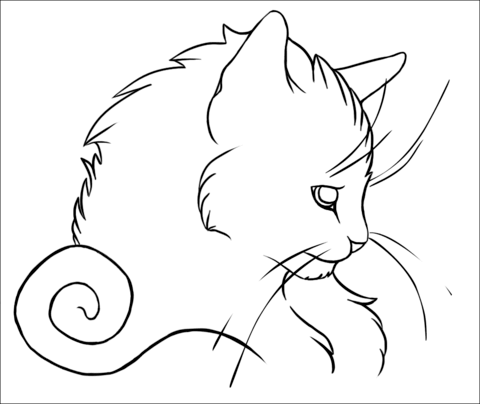 Cat Portrait coloring page