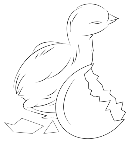Baby Chick Hatching From Egg Coloring Page