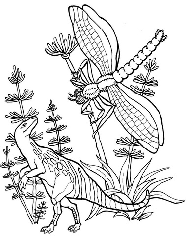 compsognathus coloring page compsognatus and meganeura coloring page