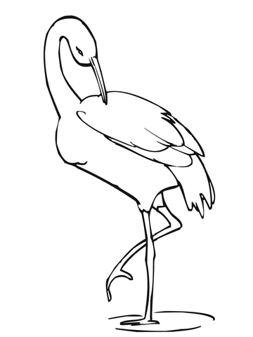Crane Stands on One Leg coloring page