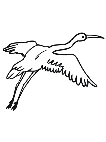 Crane with Wings Widespread coloring page