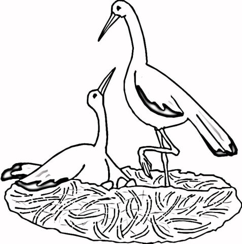 Cranes in the Nest  coloring page