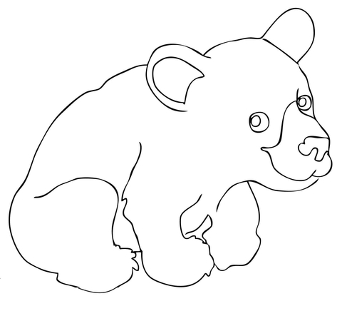 Cute American Black Bear Cub coloring page