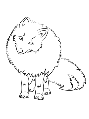 Cute Arctic Fox coloring page