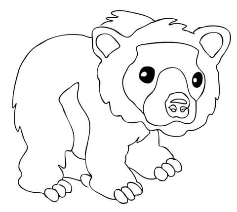 Cute Brown Bear coloring page