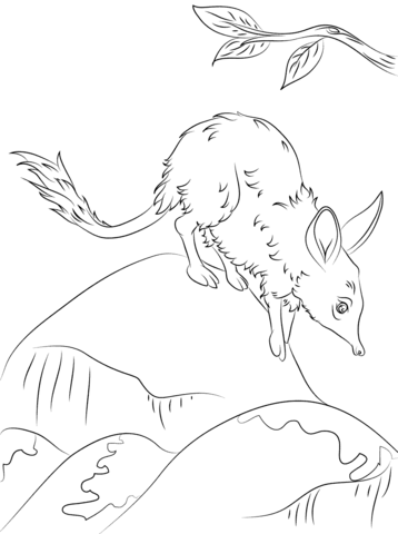 Cute Greater Bilby coloring page