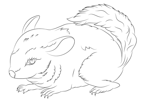 Cute Long Tailed Chinchilla coloring page