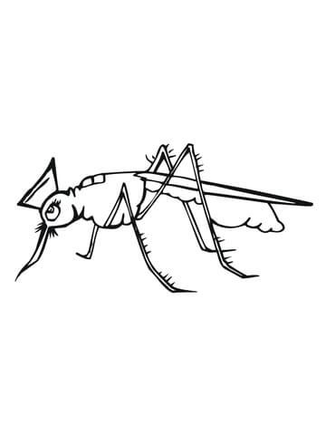 Cute Mosquito Coloring Page