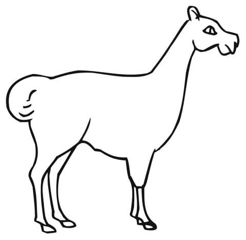 Dam Llama coloring page - Free Printable Coloring Pages