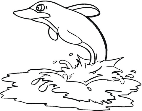 Dolphin In The Sea  coloring page
