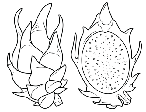 Dragon Fruit and its cross section coloring page