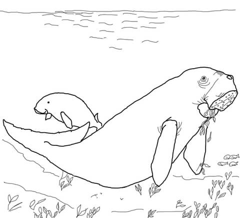 Dugong coloring page