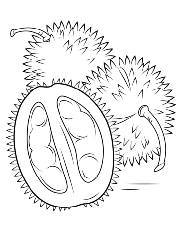 Durians coloring page