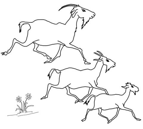 Elder, Middle and the Youngest Billy Goats coloring page
