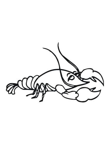 Funny Crayfish Coloring Page Free Printable Coloring Pages