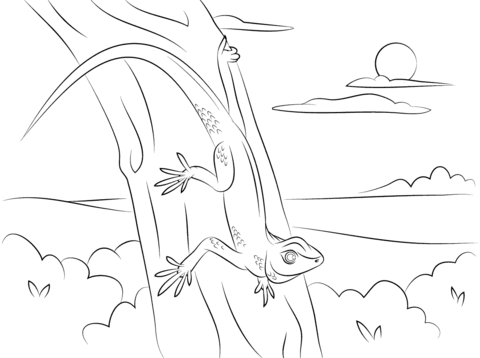 Gecko on A Tree coloring page