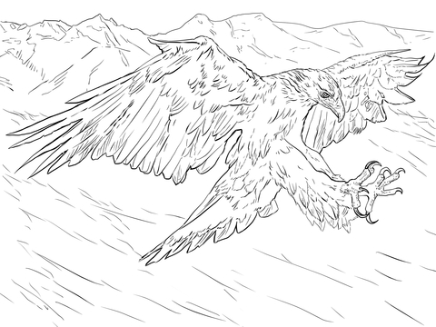 Golden Eagle Attacks coloring page