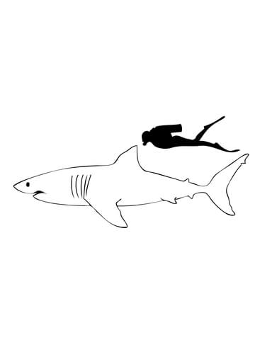 Great White Shark Compared to Human coloring page