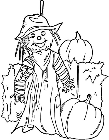 Halloween Scarecrow coloring page - Free Printable Coloring Pages