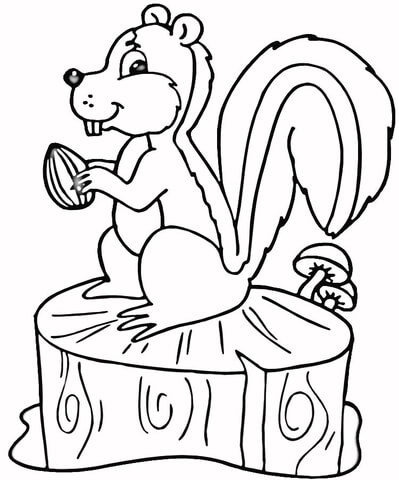 Hungry Squirrel  coloring page