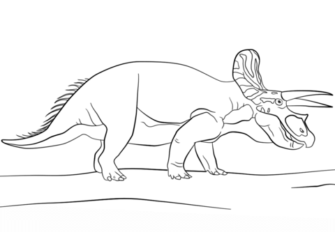 Triceratops coloring page - Free Printable Coloring Pages