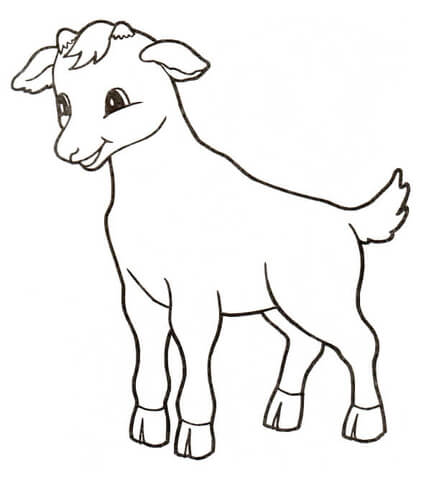 Little calf coloring page
