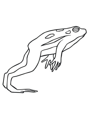 Jumping frog coloring page