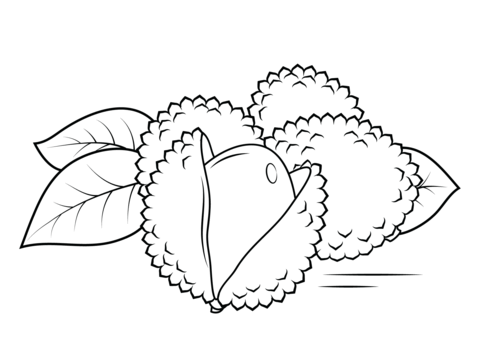 Apple Basket Coloring Page Whole And Open Lechees