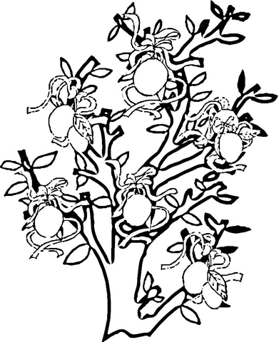 Lemon Tree  coloring page