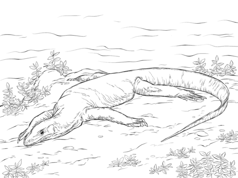 Realistic Monitor Lizard Coloring Page Free Printable