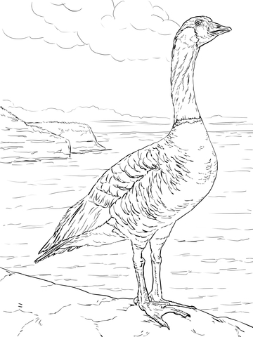 Nene Goose Coloring Page