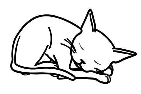 Olivia's Cat Edwin coloring page