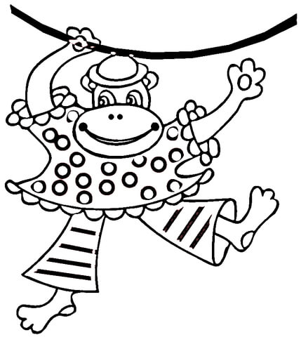 pygmy marmoset coloring pages - photo#25