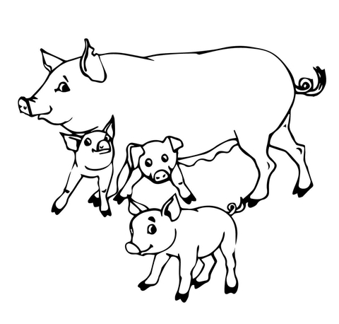 pig mother and baby pigs coloring page - Pig Coloring Page
