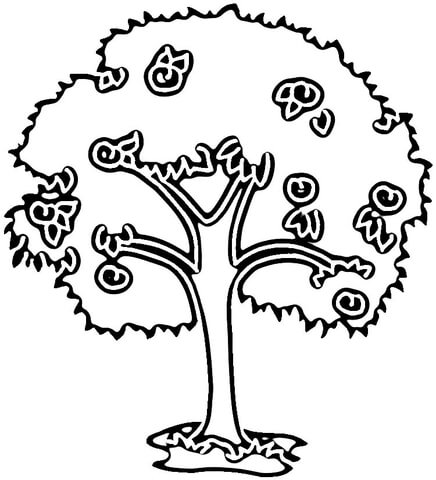 Plum Tree  coloring page