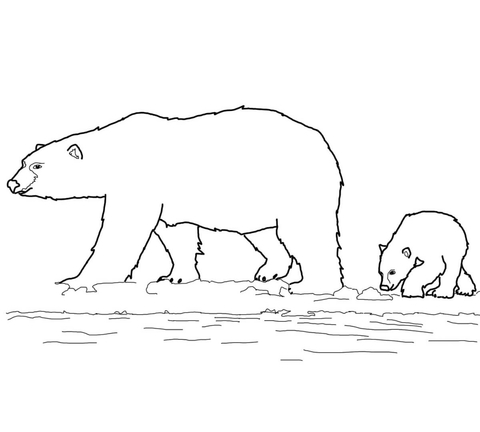 Polar Bears Family coloring page
